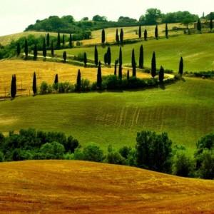 Tuscany-area-480x480